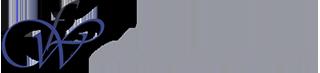 Wrinkle Free I.T. Logo